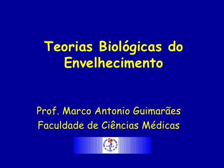 Teorias Biológicas do    Envelhecimento   Prof. Marco Antonio Guimarães Faculdade de Ciências Médicas