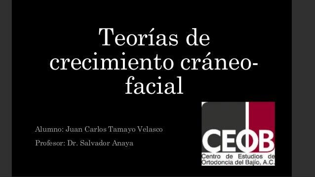 Teorías de crecimiento cráneo- facial Alumno: Juan Carlos Tamayo Velasco Profesor: Dr. Salvador Anaya