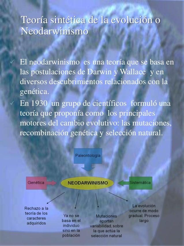 Teoria de la Evolucion Sintetica Teoría Sintética de la