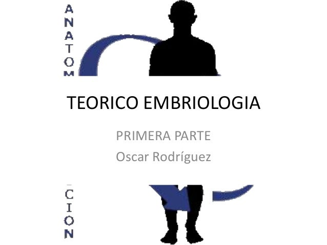 TEORICO EMBRIOLOGIA    PRIMERA PARTE    Oscar Rodríguez