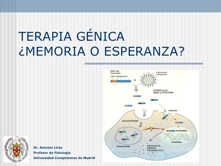 TERAPIA GÉNICA  ¿MEMORIA O ESPERANZA? Dr. Antonio Liras Profesor de Fisiología Universidad Complutense de Madrid