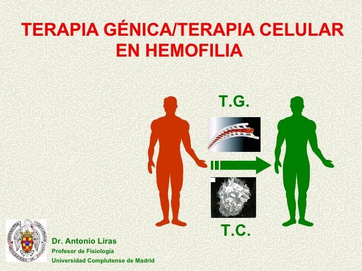 Terapia Genica/Terapia Celular en Hemofilia.