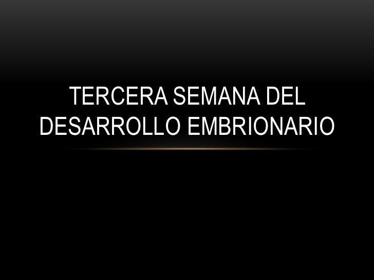 TERCERA SEMANA DELDESARROLLO EMBRIONARIO