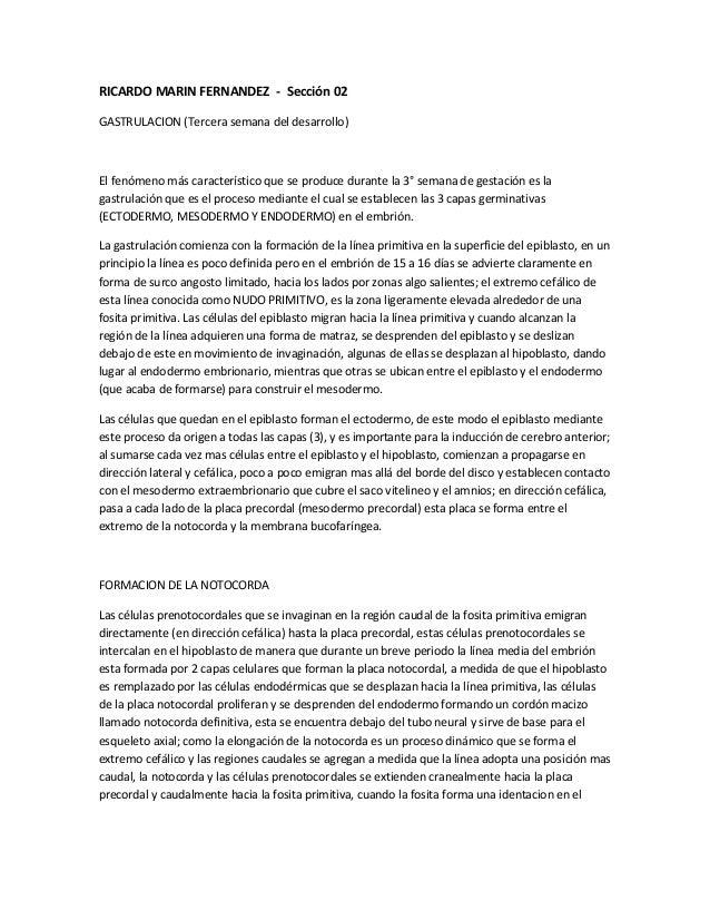 RICARDO MARIN FERNANDEZ - Sección 02GASTRULACION (Tercera semana del desarrollo)El fenómeno más característico que se prod...