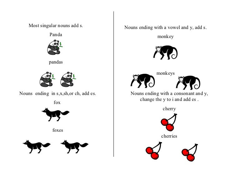 Most singular nouns add s. Panda pandas Nouns  ending  in s,x,sh,or ch, add es. fox  foxes Nouns ending with a vowel and y...
