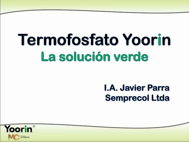 Termofosfato yoorin