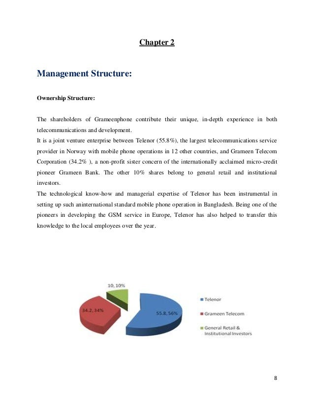 grameen bank thesis