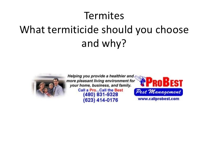 TermitesWhat termiticide should you choose and why?<br />
