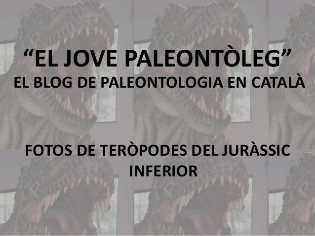 """""""EL JOVE PALEONTÒLEG"""" EL BLOG DE PALEONTOLOGIA EN CATALÀ  FOTOS DE TERÒPODES DEL JURÀSSIC INFERIOR"""