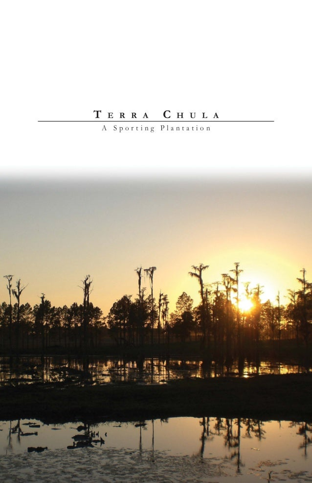 Terra Chula