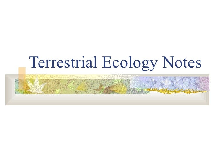 Terrestrial Ecology Notes