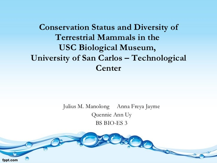 Conservation Status and Diversity of Terrestrial Mammals in the  USC Biological Museum,  University of San Carlos – Techno...