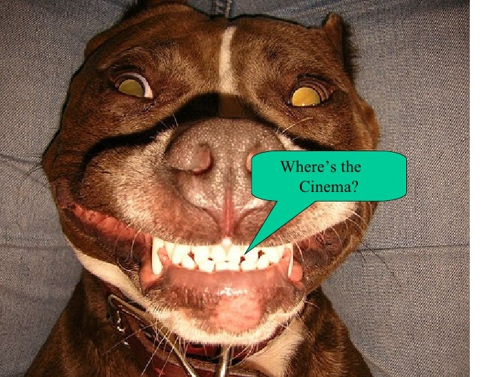 Where's the  Cinema?