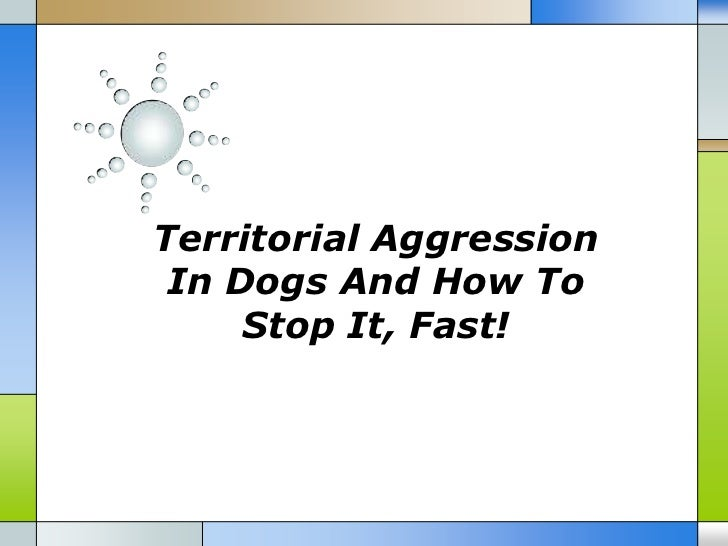 Territorial Aggression In Dogs And How To     Stop It, Fast!