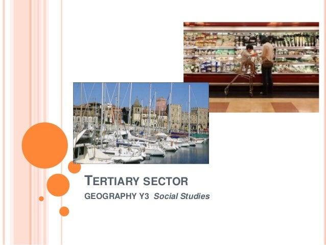 TERTIARY SECTOR GEOGRAPHY Y3 Social Studies