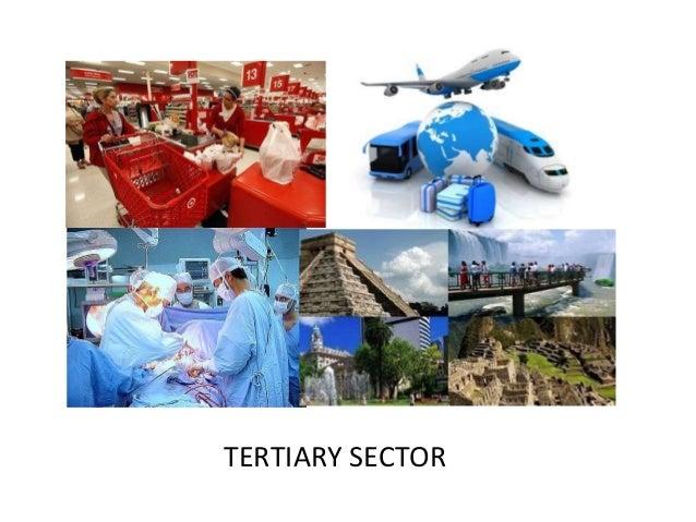 tertiary industry : eightieth.ga, Cephalic Vein