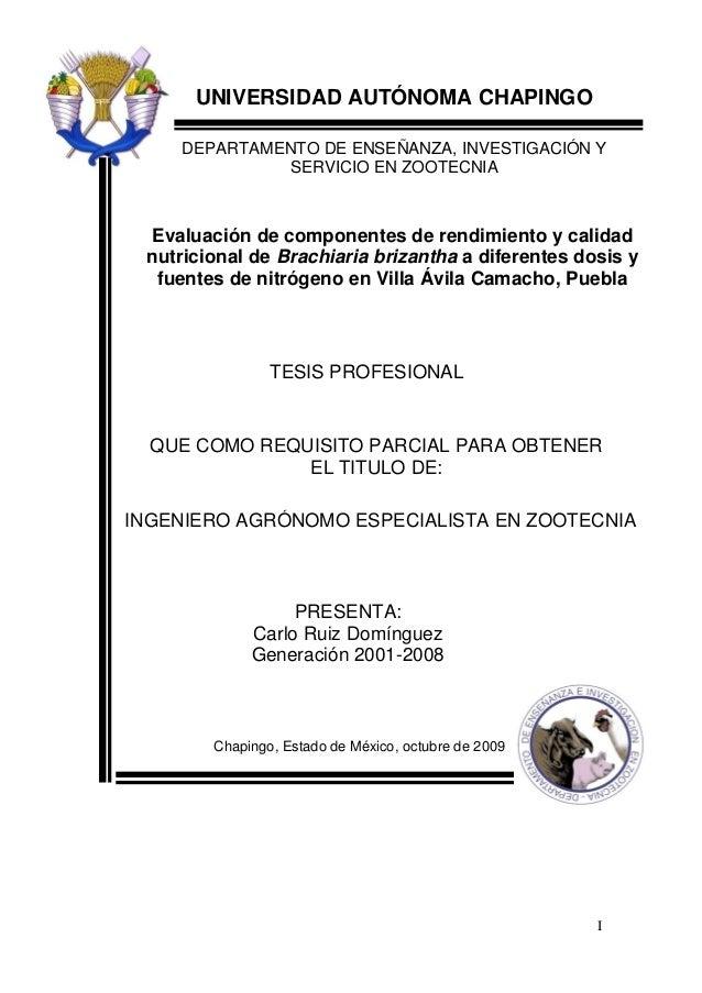 I UNIVERSIDAD AUTÓNOMA CHAPINGO DEPARTAMENTO DE ENSEÑANZA, INVESTIGACIÓN Y SERVICIO EN ZOOTECNIA Evaluación de componentes...