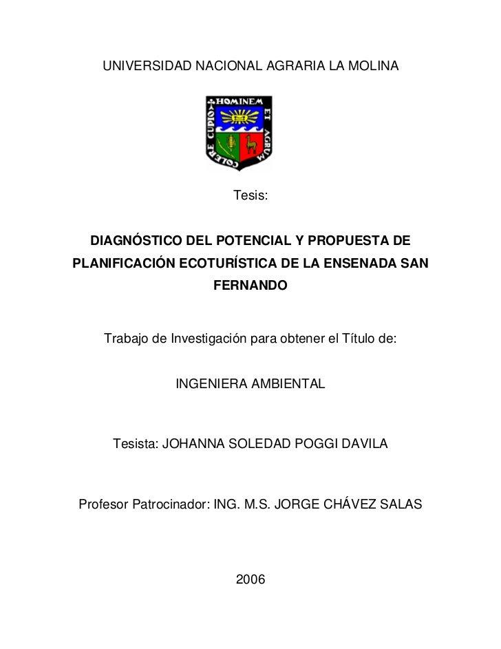 UNIVERSIDAD NACIONAL AGRARIA LA MOLINA                              Tesis:     DIAGNÓSTICO DEL POTENCIAL Y PROPUESTA DE PL...