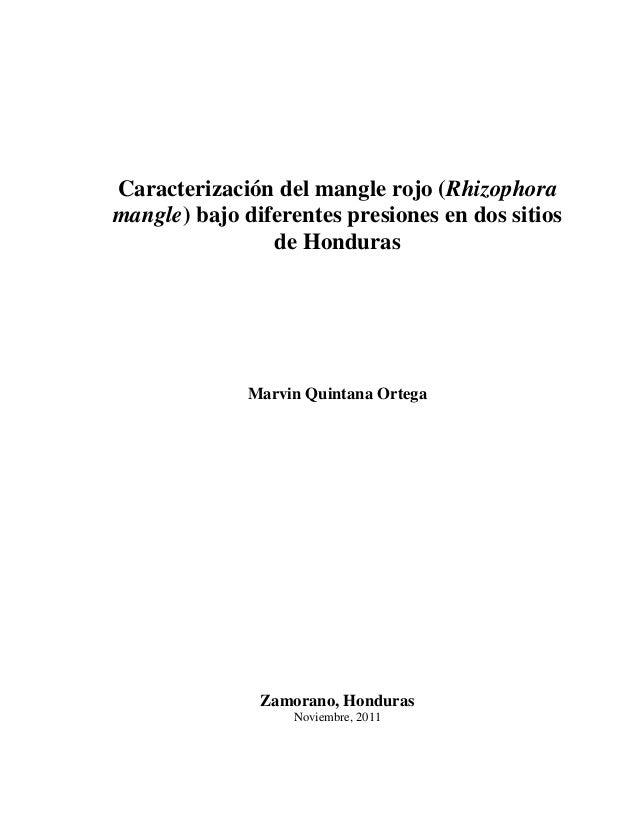 Caracterización del mangle rojo (Rhizophoramangle) bajo diferentes presiones en dos sitios                de Honduras     ...