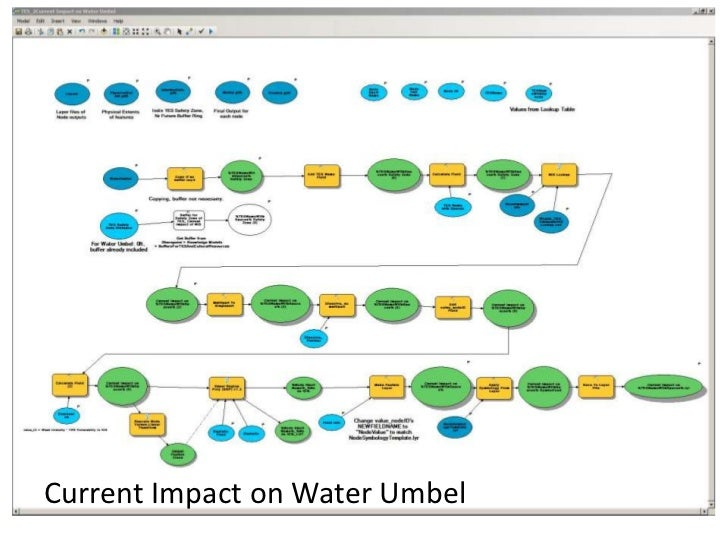 Current Impact on Water Umbel<br />