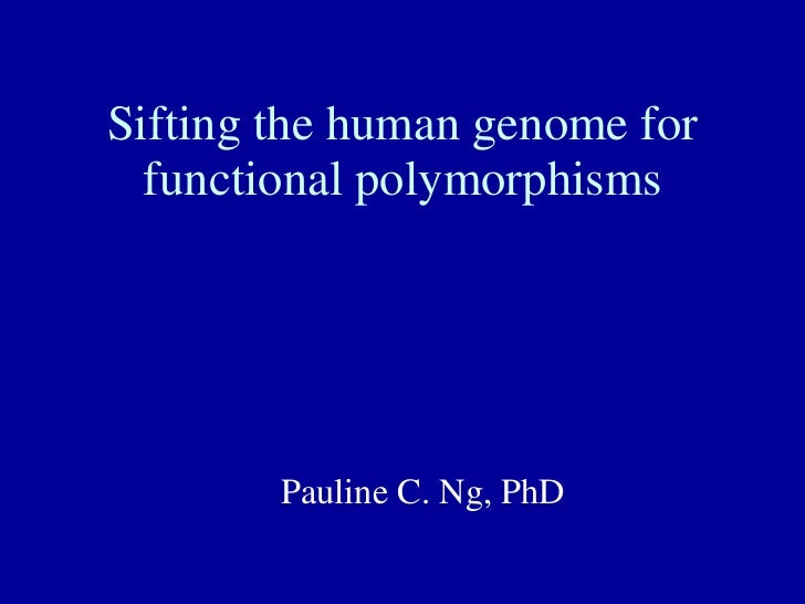Sifting the human genome for functional polymorphisms Pauline C. Ng, PhD