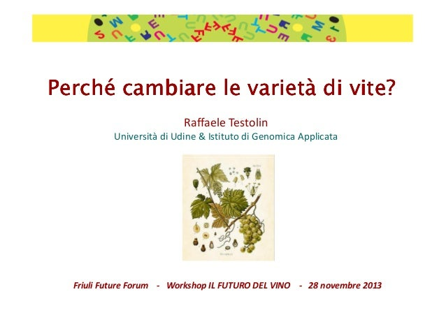 Future Forum 2013: Raffaele Testolin