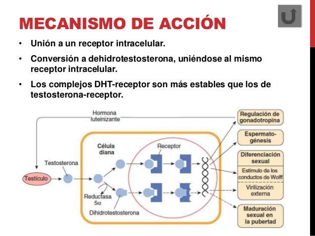 anabolicos esteroides venta en uruguay