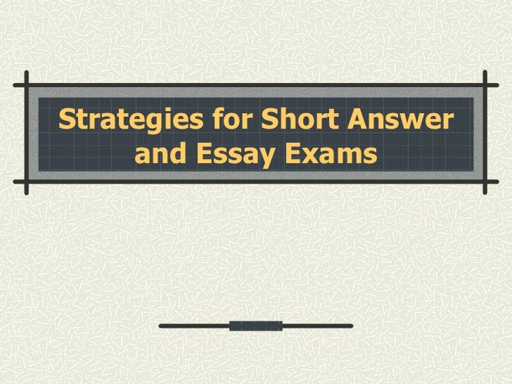 Testing and Test Strategy Essay Sample