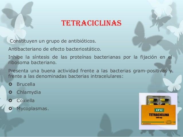 TETRACICLINAS Constituyen un grupo de antibióticos. Antibacteriano de efecto bacteriostático. Inhibe la síntesis de las pr...