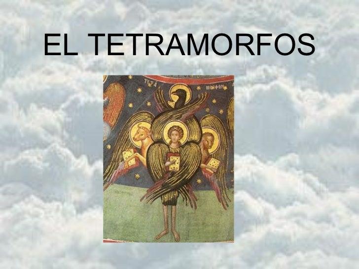 EL TETRAMORFOS