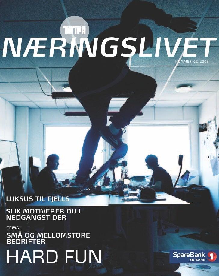 NÆRINGSLIVET                 NUMMER_02_2009     LUKSUS TIL FJELLS SLIK MOTIVERER DU I NEDGANGSTIDER TEMA:  SMÅ OG MELLOMST...