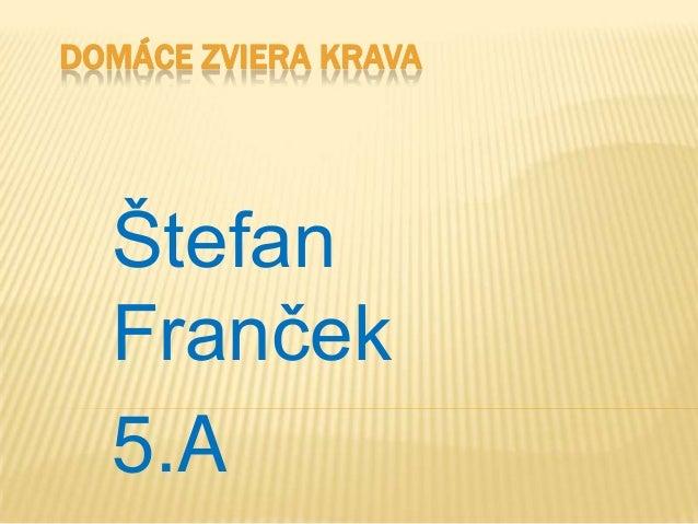 DOMÁCE ZVIERA KRAVAŠtefanFranček5.A