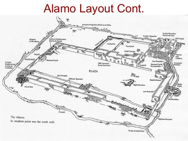 layout of the alamo gallery