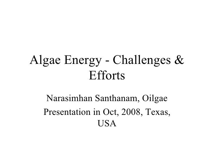 Algae Energy - Challenges & Efforts Narasimhan Santhanam, Oilgae Presentation in Oct, 2008, Texas, USA