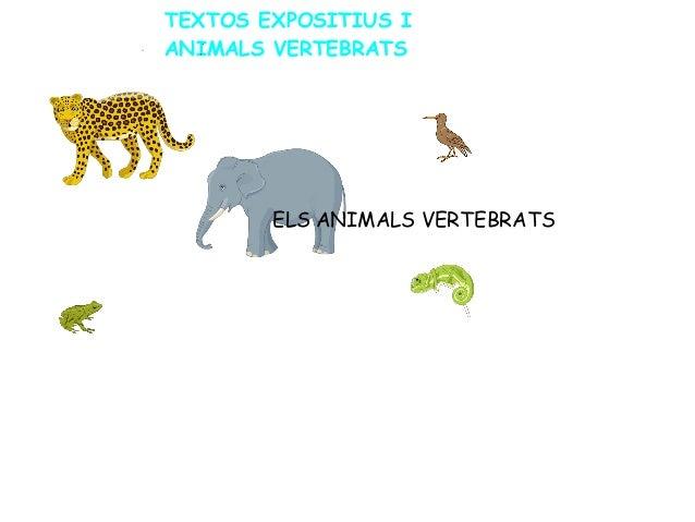 TEXTOS EXPOSITIUS I ANIMALS VERTEBRATS ELS ANIMALS VERTEBRATS