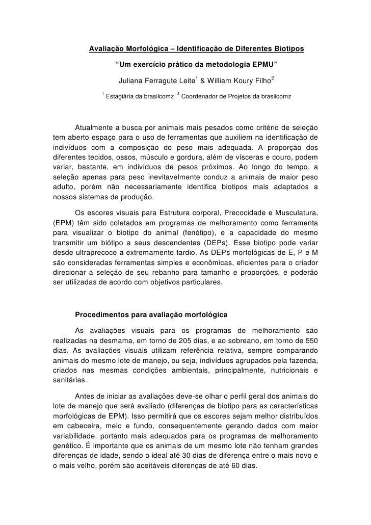 """Avaliação Morfológica – Identificação de Diferentes Biotipos                       """"Um exercício prático da metodologia EP..."""