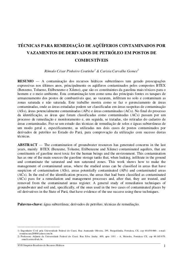 TÉCNICAS PARA REMEDIAÇÃO DE AQÜÍFEROS CONTAMINADOS POR VAZAMENTOS DE DERIVADOS DE PETRÓLEO EM POSTOS DE COMBUSTÍVEIS Rômul...