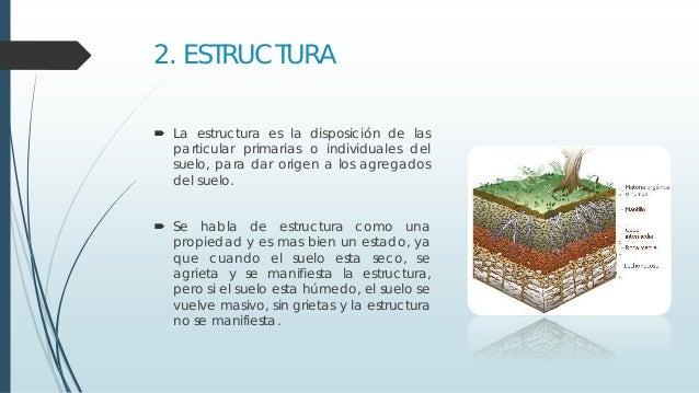 Textura y estructura de los suelos for Como esta constituido el suelo