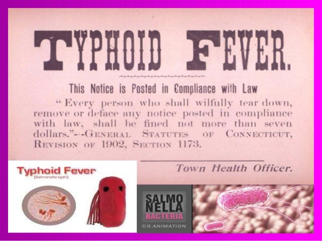 Typhoid Fever: Get Facts About This Life-Threatening Illness