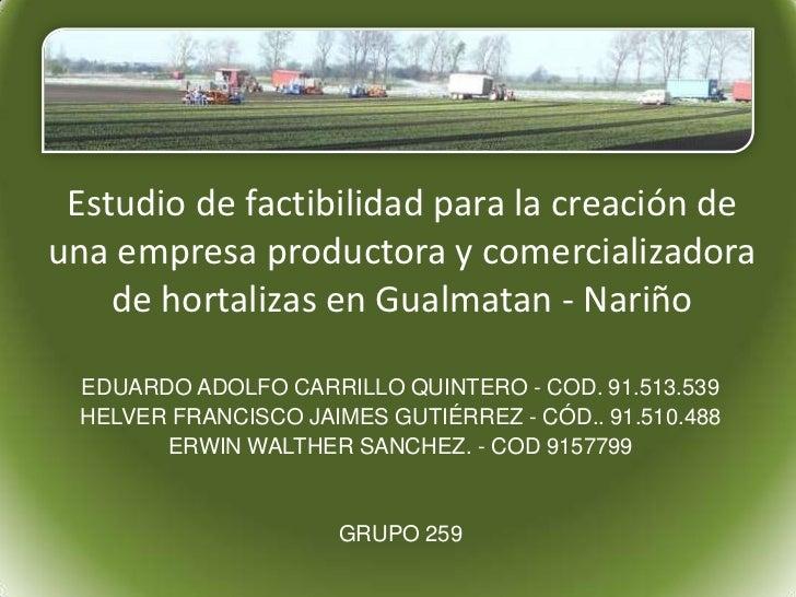Estudio de factibilidad para la creación deuna empresa productora y comercializadora    de hortalizas en Gualmatan - Nariñ...