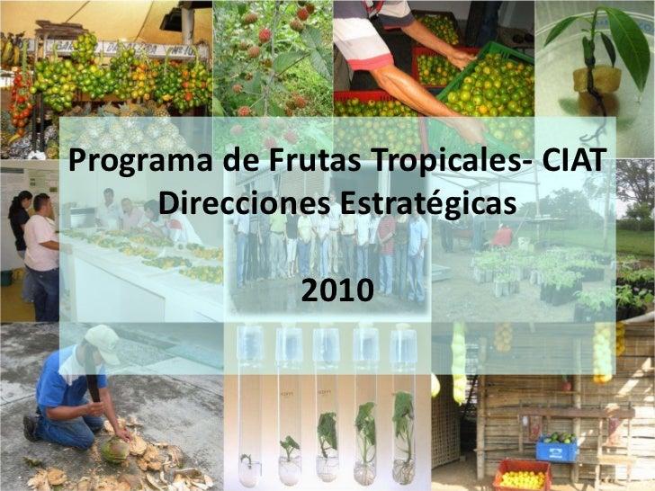 Programa de Frutas Tropicales- CIATDirecciones Estratégicas2010<br />