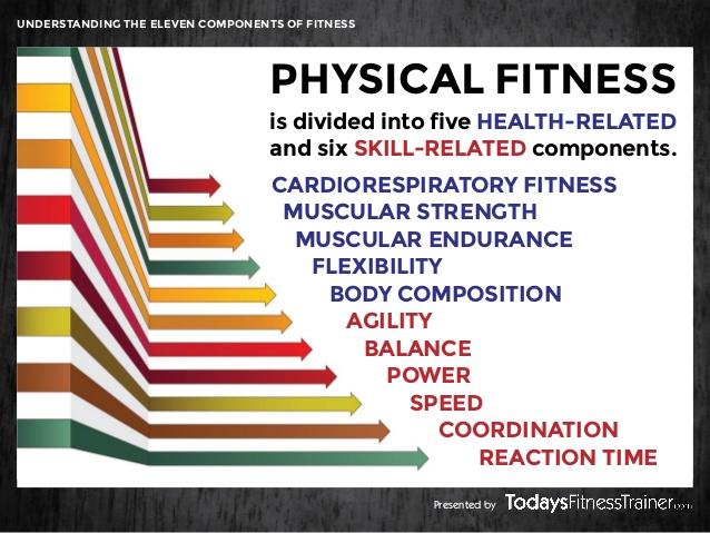 owners life elliptical x5i fitness manual