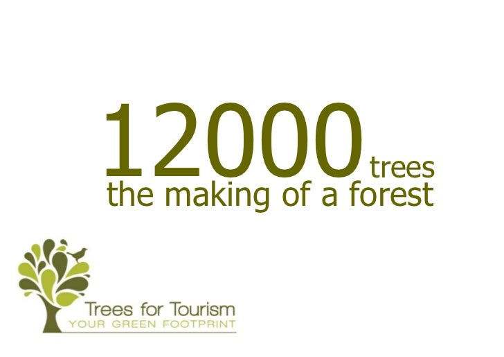 12000            treesthe making of a forest
