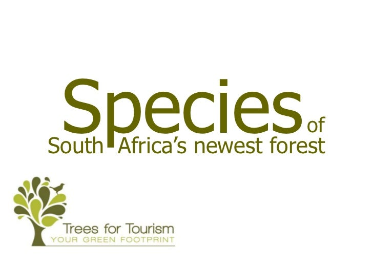 Species                  ofSouth Africa's newest forest