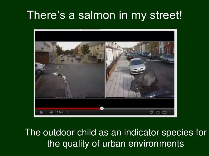 """There""""s a salmon in my street!The outdoor child as an indicator species for     the quality of urban environments"""