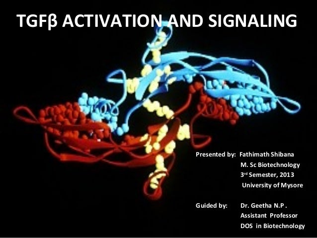TGFβ ACTIVATION AND SIGNALING Presented by: Fathimath Shibana M. Sc Biotechnology 3rd Semester, 2013 University of Mysore ...