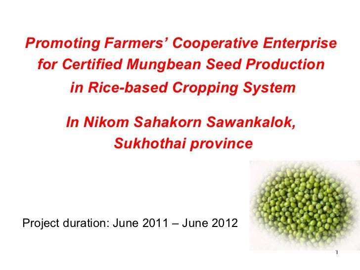 Promoting Farmers' Cooperative Enterprise  for Certified Mungbean Seed Production  in Rice-based Cropping System In Nikom ...