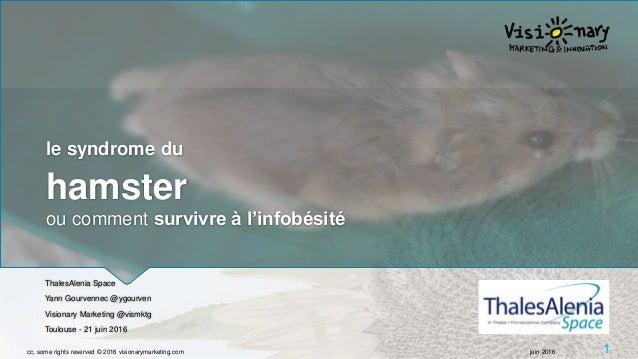 le syndrome du hamster ou comment survivre à l'infobésité ThalesAlenia Space Yann Gourvennec @ygourven Visionary Marketing...