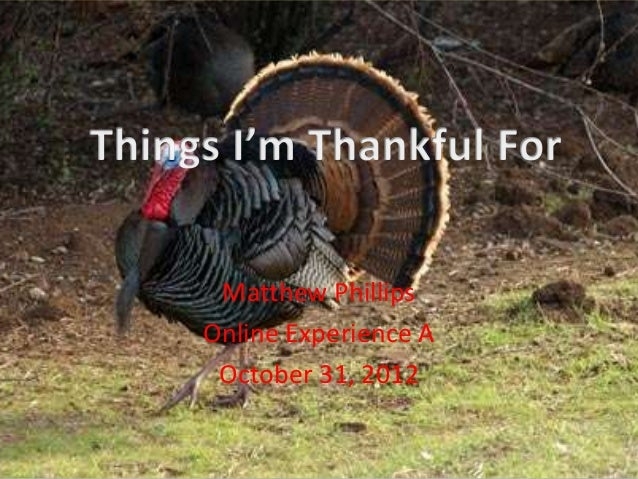 Matthew PhillipsOnline Experience A October 31, 2012
