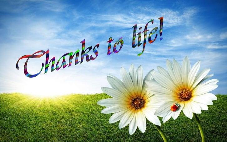 http://image.slidesharecdn.com/thankstolife-120627003533-phpapp01/95/thanks-to-life-1-728.jpg?cb=1340757493